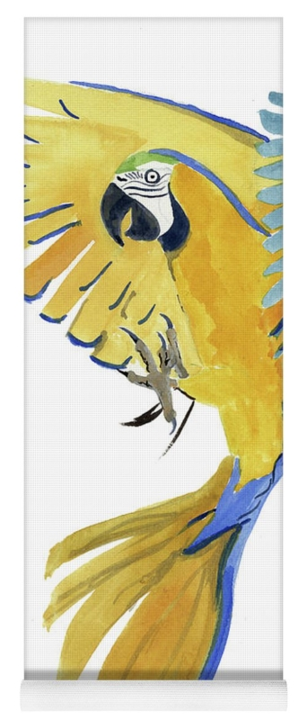Blue Macaw by Priscilla Emmerson